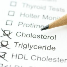 Know What your Cholesterol Numbers Mean